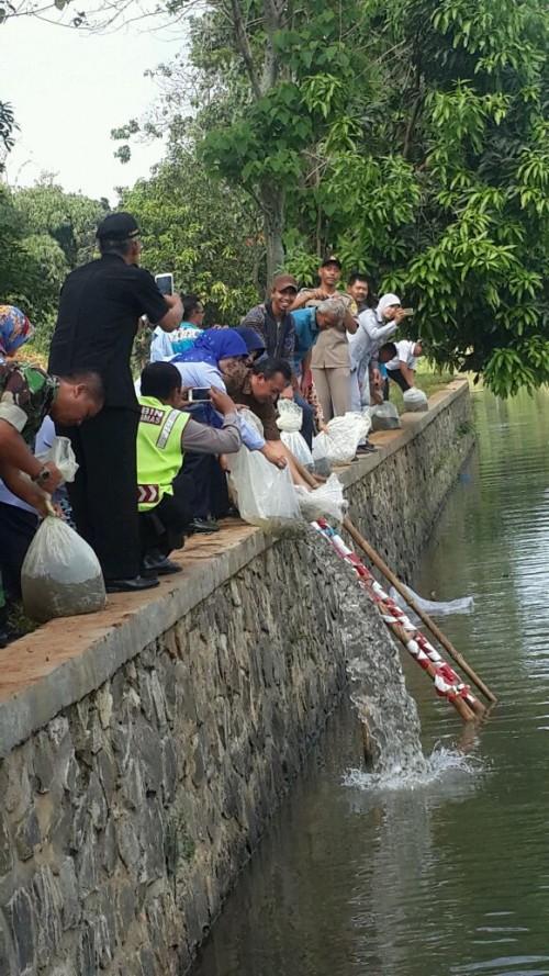 Re Stocking Ikan Nila Di Situ Gedong